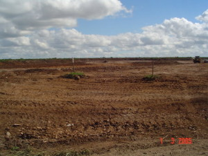 01 - Storm Water for Coega Industrial Zone 2 - Clear and Grub of Storm Water Attenuation Pond Area