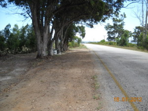 12 - Kouga-Koukamma - Rest Area (After)